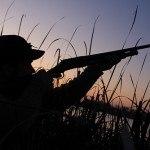 hunting_geese